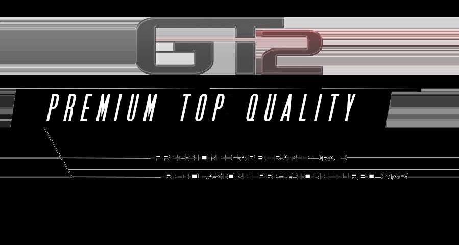 GT2logo